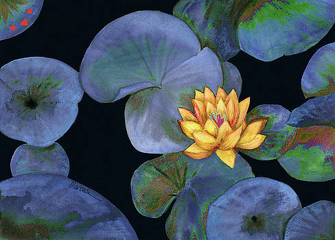 Lotus Light Lapis by Leslie Marcus