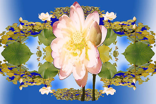 Lotus Mandala in Blue by Pederbeck Arte Gruppe