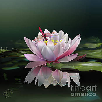 Lotus Meditation by Rosa Cobos