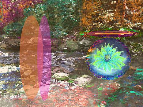 Anne Cameron Cutri - Lotus of the creek