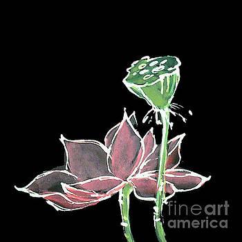 Lotus-Pink by Chris Paschke
