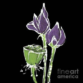 Lotus-Purple by Chris Paschke