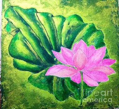 Lotus by Sylvie Leandre