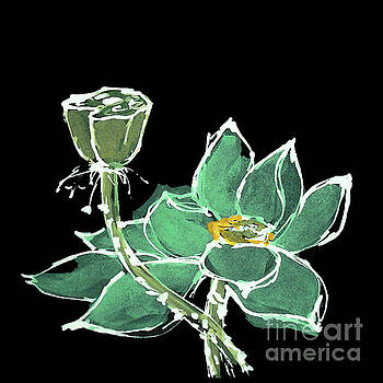 Lotus-Teal by Chris Paschke