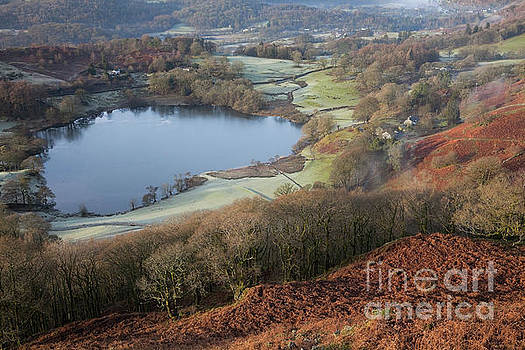 Loughrigg Tarn from Loughrigg Fell by Gavin Dronfield