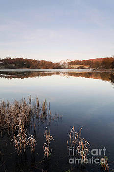 Loughrigg Tarn portrait by Gavin Dronfield
