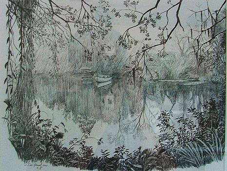 Louisana Swamp by Dan Hausel