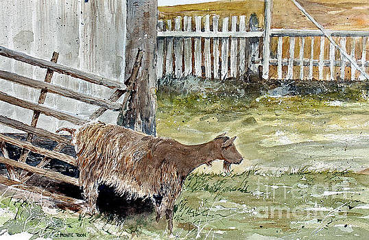 Louisbourg Resident by Monte Toon