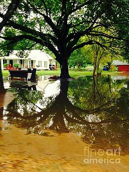 Louisiana Flood l by Robin Lewis