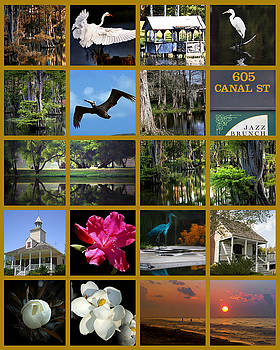 Louisiana Images by Cecil Fuselier