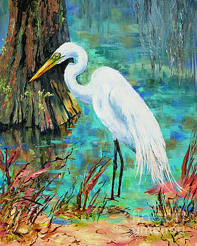 Louisiana Male Egret by Dianne Parks