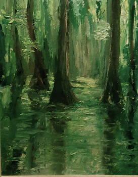 Louisiana Swamp by Bruce Ben Pope