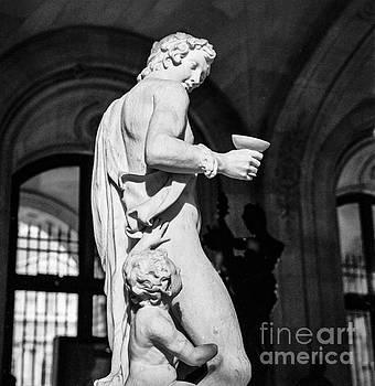 Cyril Jayant - Louvre Museum Paris.
