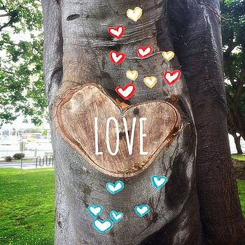 #love #🌳 by Claudia Garcia Trejo
