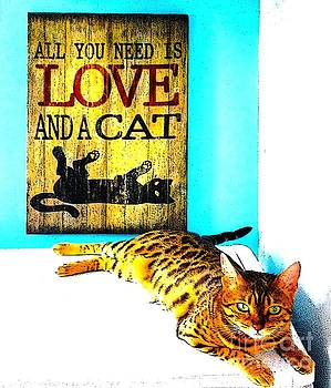 Love and a Cat by Barbara Griffin