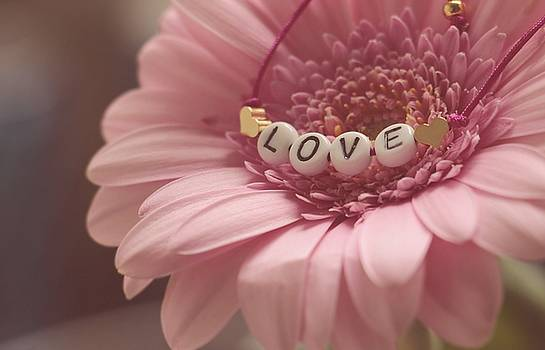 Love by Ando Yumi