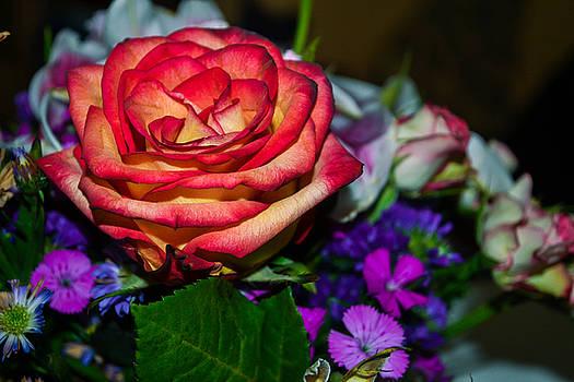 Love Blooms by Victoria Dietz