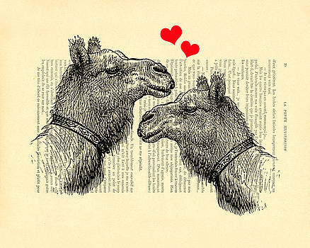 Love camels by Madame Memento