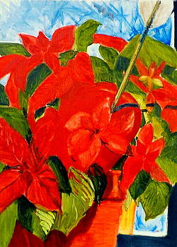 Love in the Poinsettia by Chris Walker