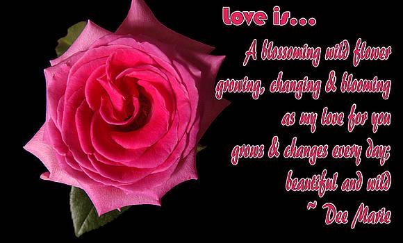 Clayton Bruster - Love Is ...