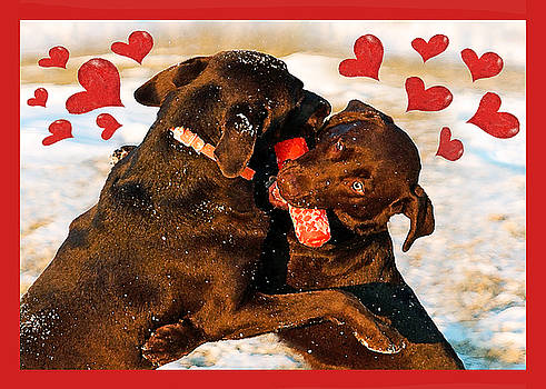 Love Is In The Air by Dale Hall