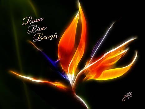 LOVE LAUGH LIVE Strelitzia reginae digital artwork by Georgeta Blanaru