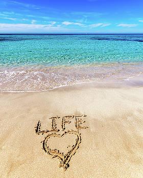 Love Live by Scott Masterton