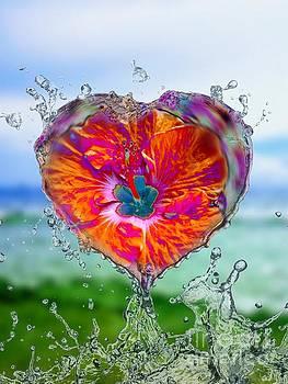 Rachel Hannah - Love Makes A Splash