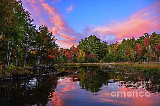 Love New Hampshire by Mim White