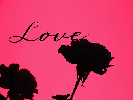 Love Rose Silhouette - Original Floral Photographic Art and Design  by Brooks Garten Hauschild