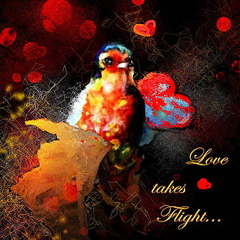Miki De Goodaboom - Love takes Flight