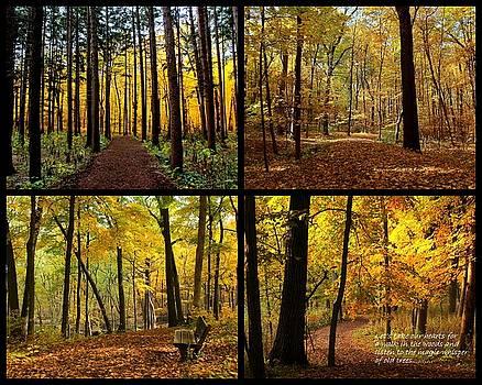 Rosanne Jordan - Love the Forest Collage
