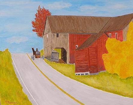 Love To Amish County Pennsylvania by Thi Nguyen