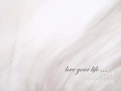 Love Your Life by Andrea Kollo
