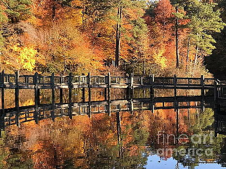 Lovely Autumn Day by Tannis Baldwin