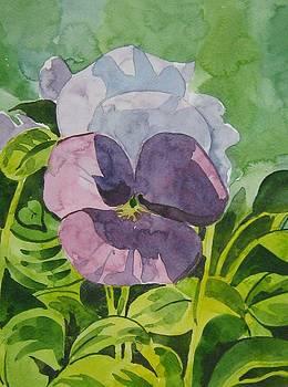Lovely Flowers by Akhilkrishna Jayanth