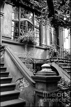 Lovely, in Greenwich Village by Lynn Lieberman