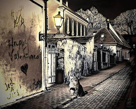 Lovers Lane by Pennie  McCracken