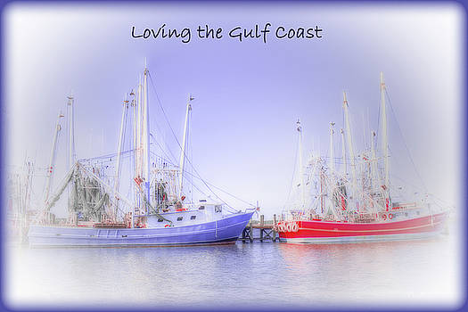 Loving the Gulf Coast by Barry Jones