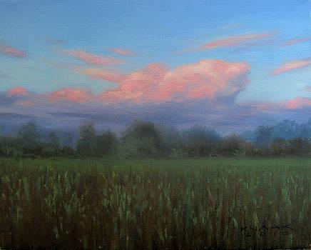 Low Sun by Dale Knaak