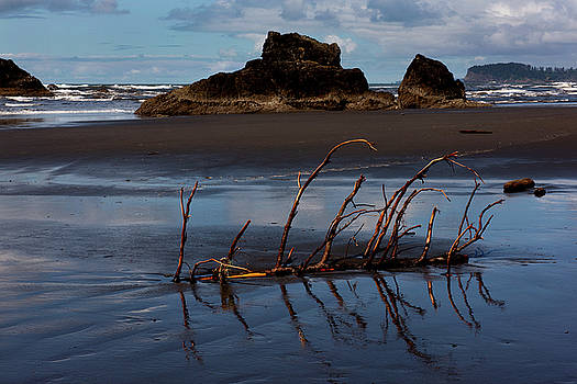 Low Tide at Ruby Beach by David Lunde