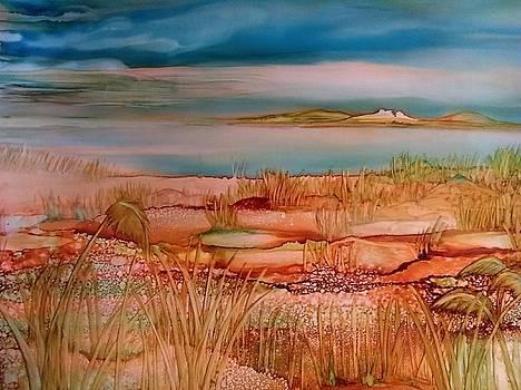 Low Tide by Betsy Carlson Cross