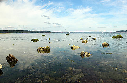 Low tide delight by Richard Jones