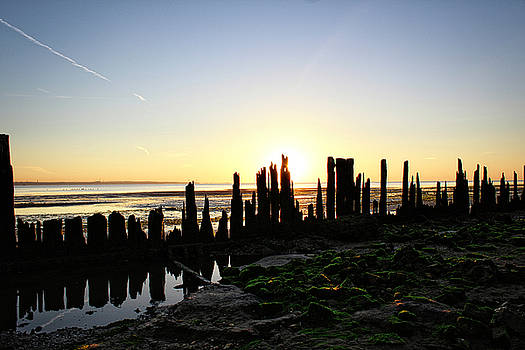 Low Tide Early Morning by Todd Dunham