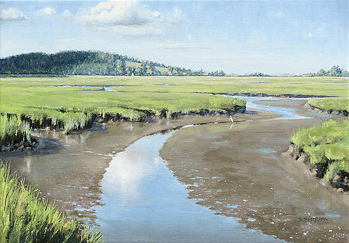 Low Tide High Grass by Steven A Simpson