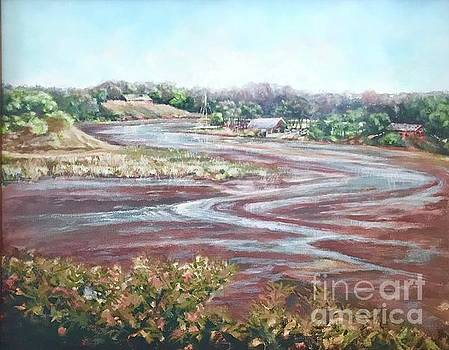Low Tide in the Cove by Gail Allen