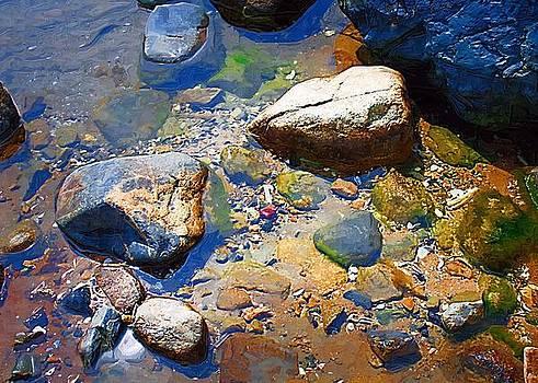 Low Tide by John Ellis