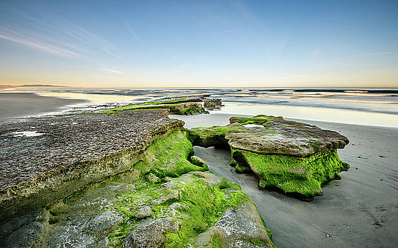 Low Tide Morning at Tabletop Reef by Alexander Kunz