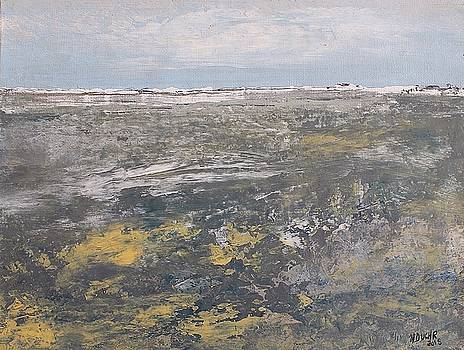 Low Tide by Norma Duch