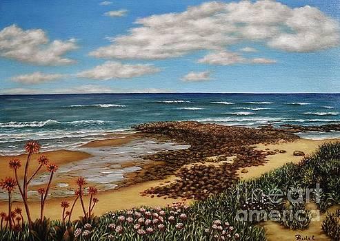 Low Tide by Paula Ludovino
